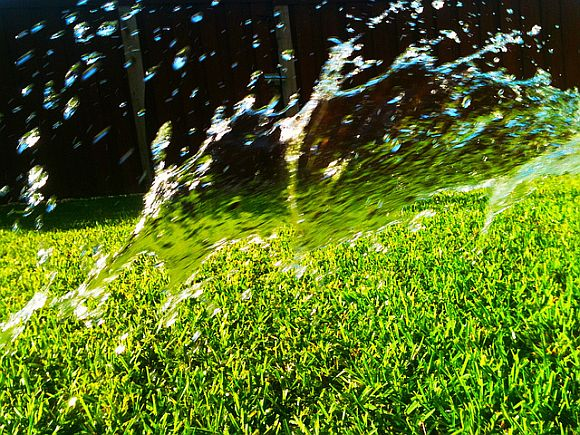 Keep Your Grass Green During A Heat Wave