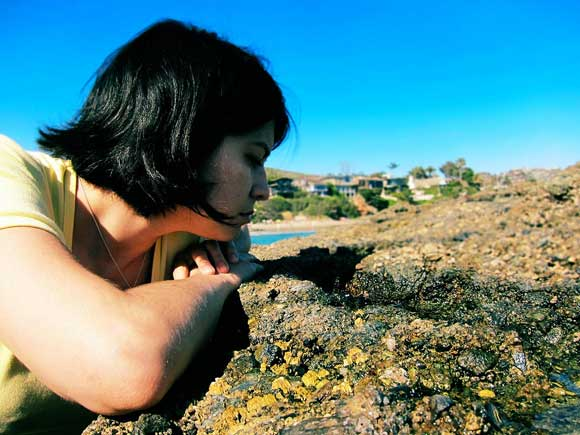 How to Explore Tide Pools (Responsibly)