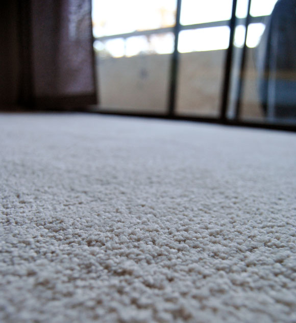 stainmaster closeup New Baby, New Carpet   A Stainmaster Solarmax Makeover