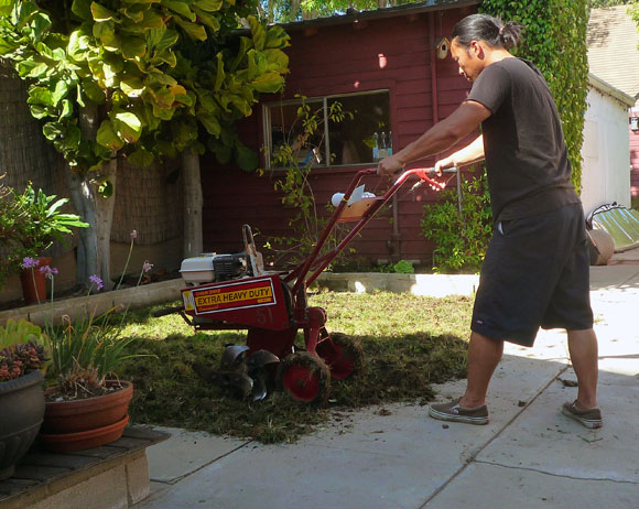 tilling lawn How to Lay Sod Grass In Time for Spring