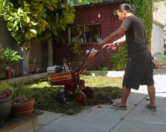 tilling-lawn.jpg