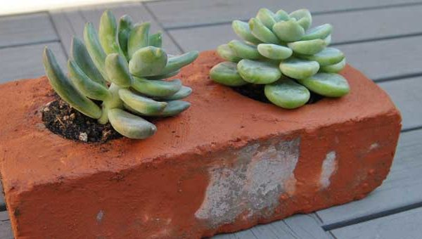 How To Make Brick Succulent Planters