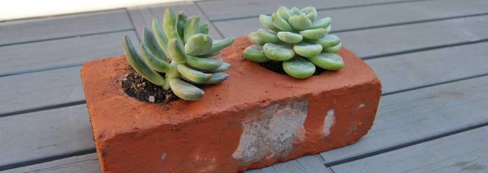 succulent brick planters large