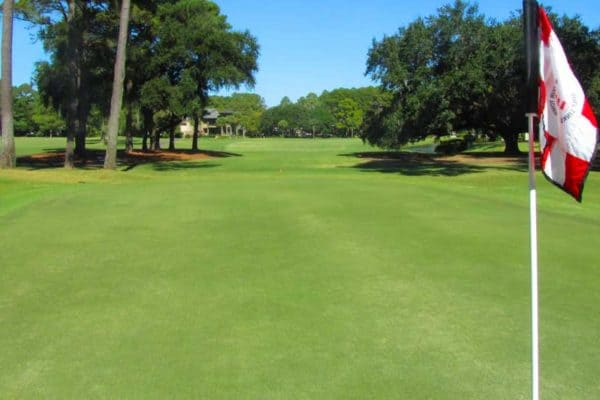 Lawn Tips From a Pro PGA Greenskeeper