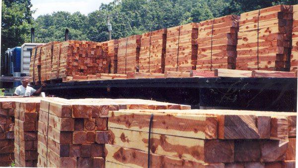 cedar-lumber-logs