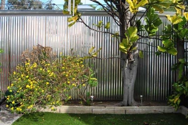 Build a Backyard Privacy Fence