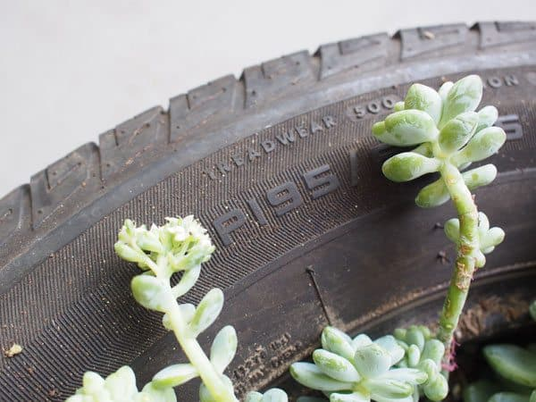 tire-closeup