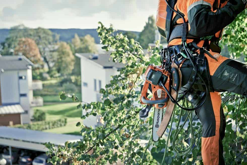 Arborist with battery top handle chainsaw T536Li XP attached to belt while climbing1