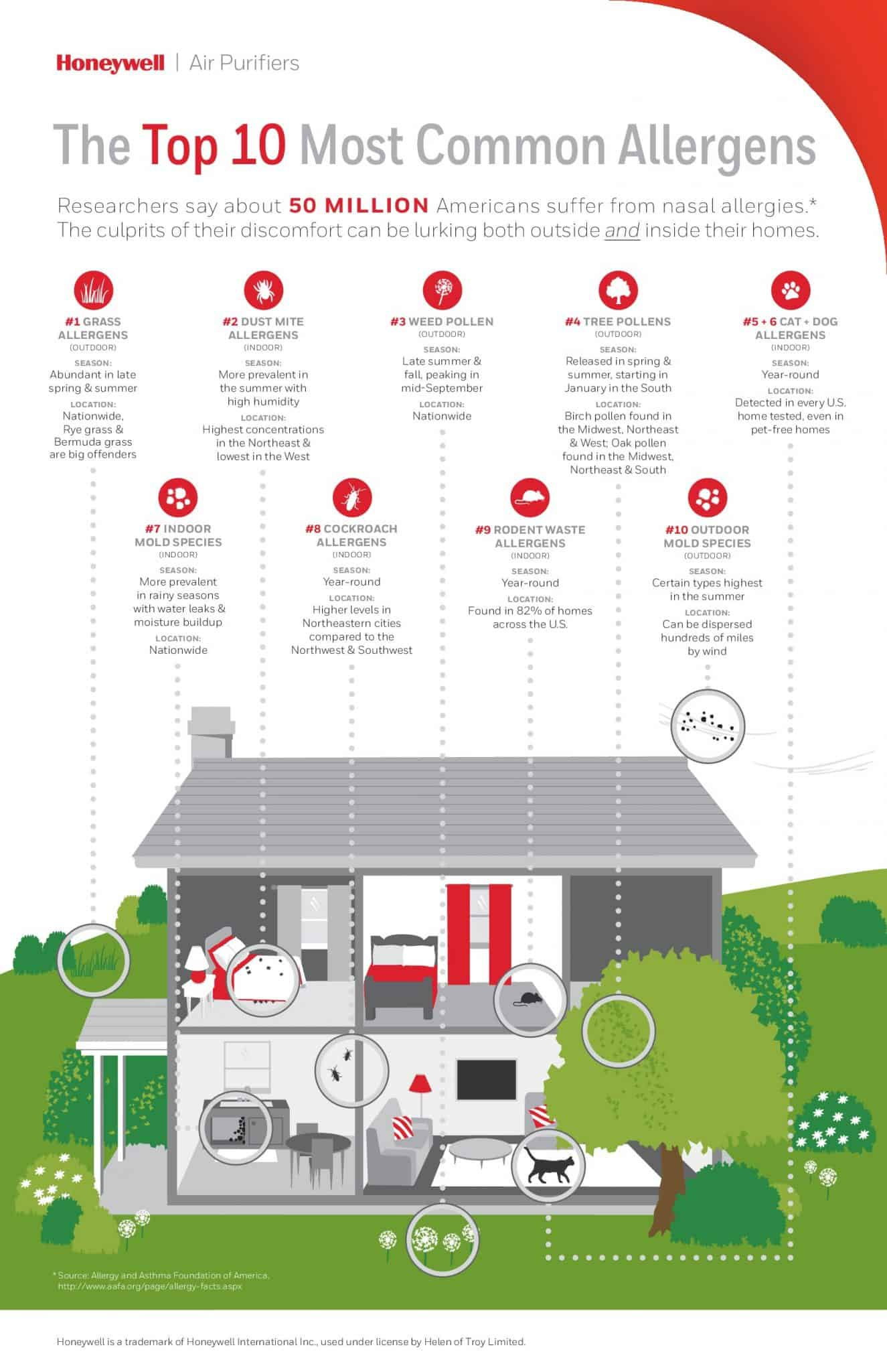 Top 10 Allergies From Your Home (Infographic)