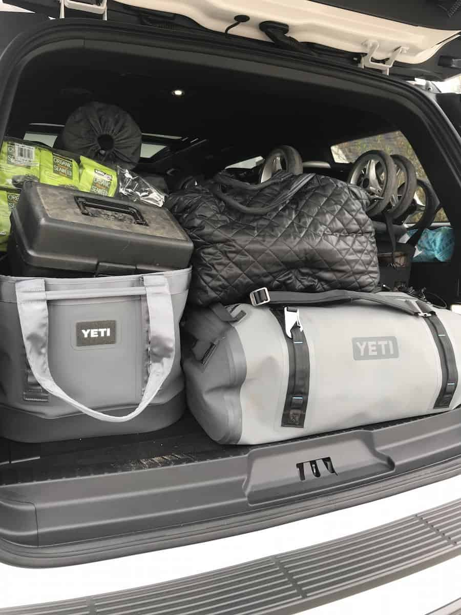 ford expedition cargo