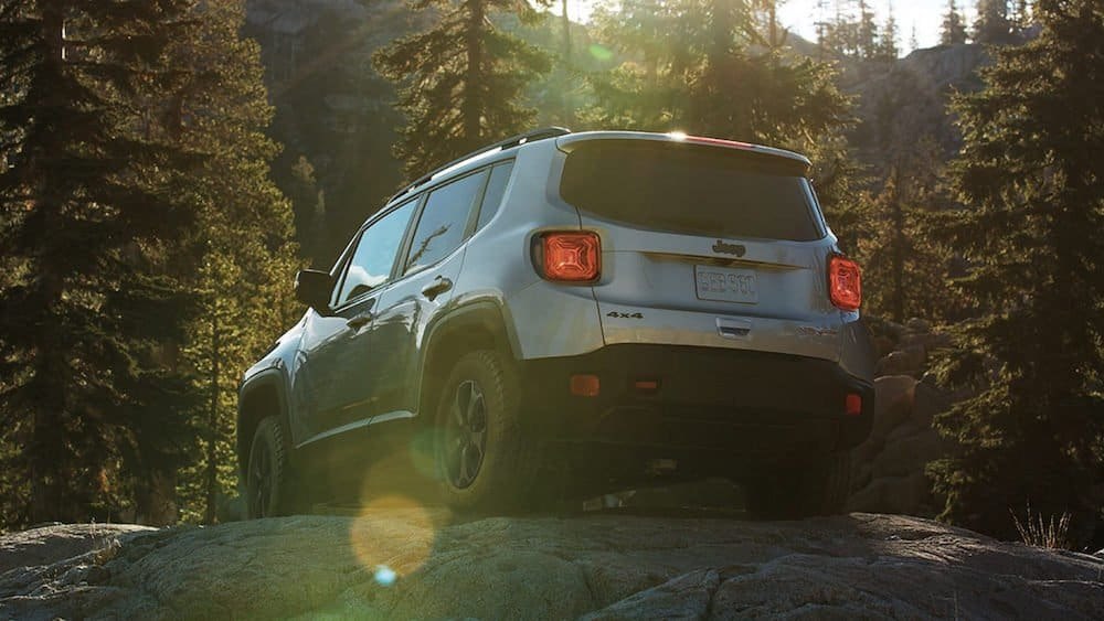 2019 Jeep Renegade Gallery Capability Trailhawk Rear Forest.jpg.image .2880