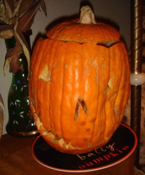matthew gray gubler pumpkin1