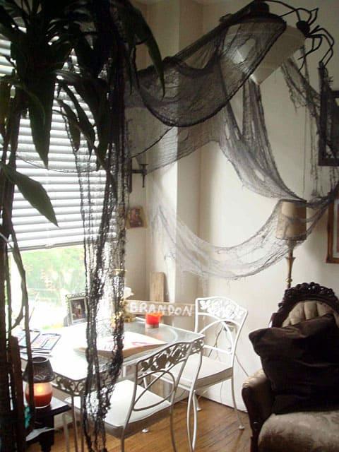 matthew gray gubler spider web