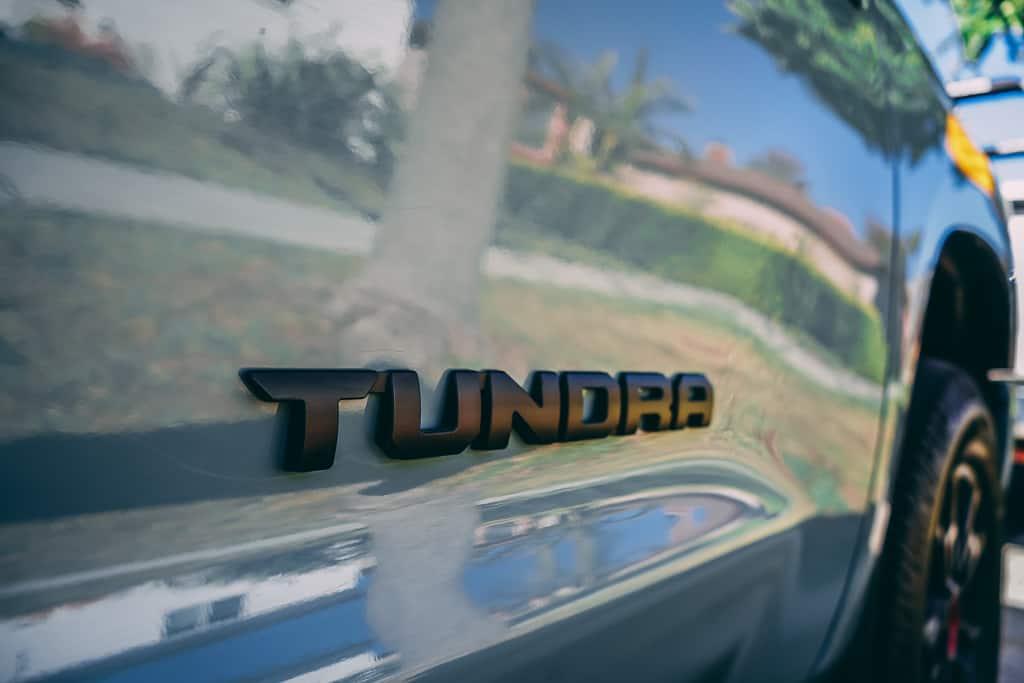 Tundra21 44 2